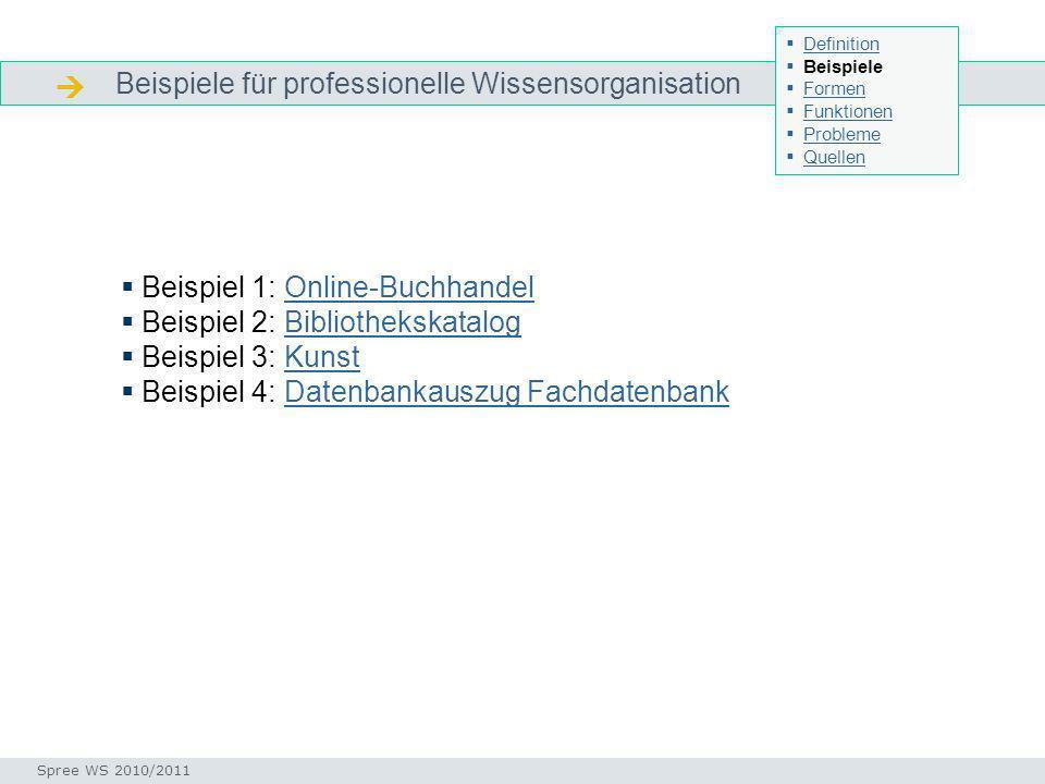  Beispiele für professionelle Wissensorganisation