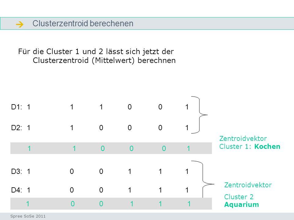  Clusterzentroid berechenen