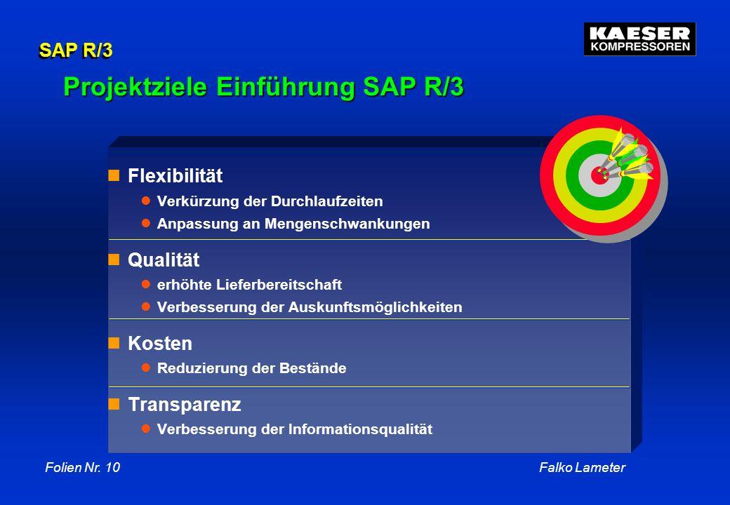 Projektziele Einführung SAP R/3