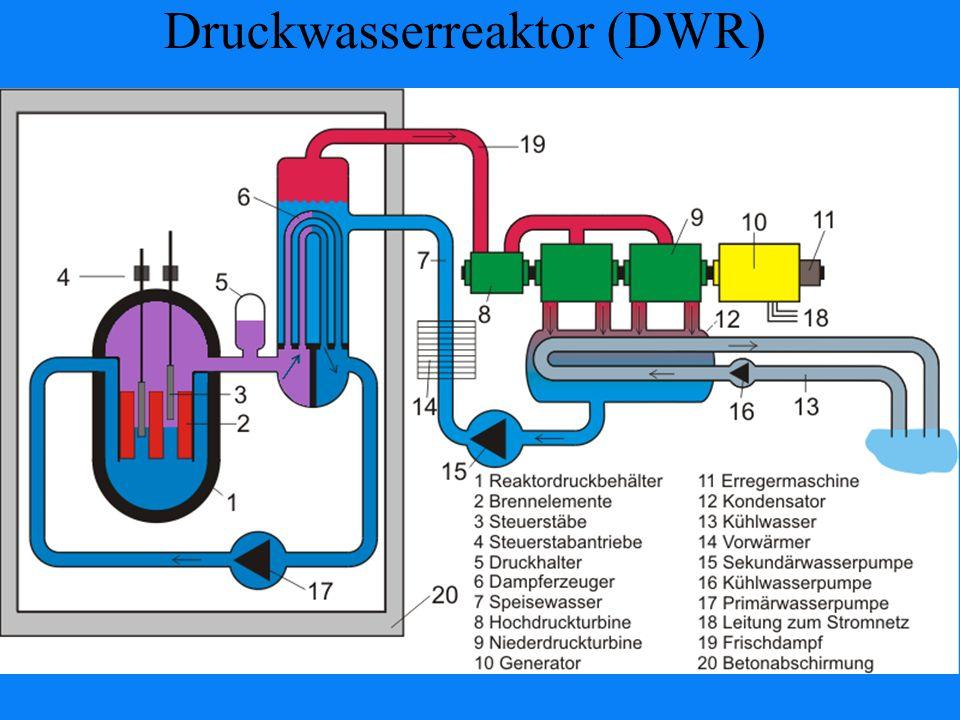 Druckwasserreaktor (DWR)