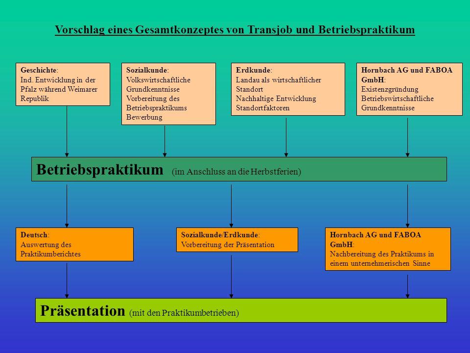 Vorschlag eines Gesamtkonzeptes von Transjob und Betriebspraktikum