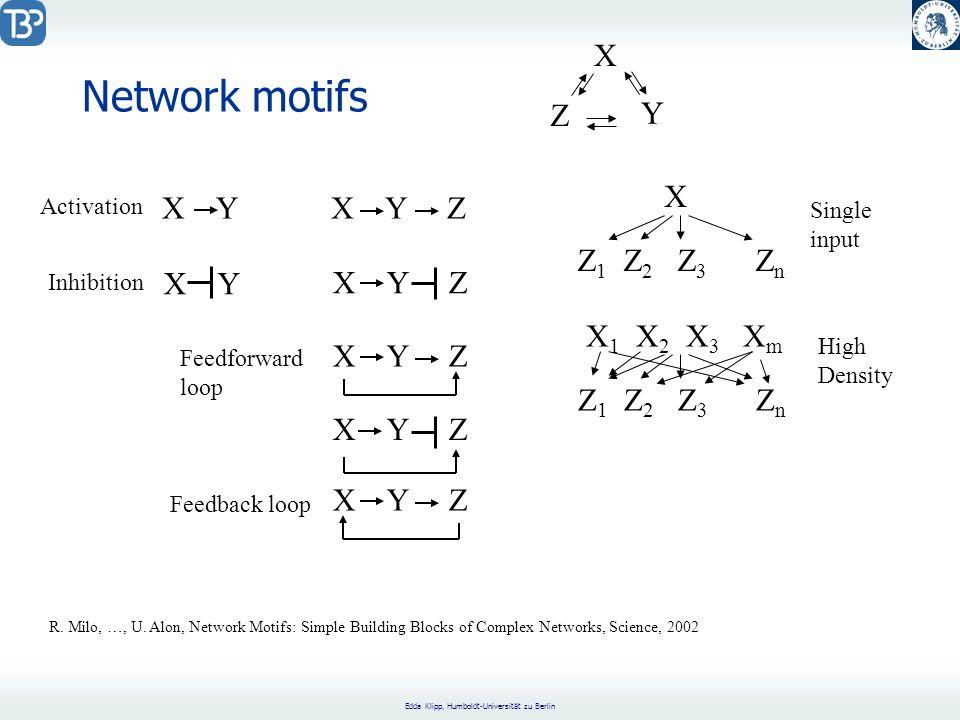 Network motifs X Z Y X X Y X Y Z Z1 Z2 Z3 Zn X Y X Y Z X1 X2 X3 Xm