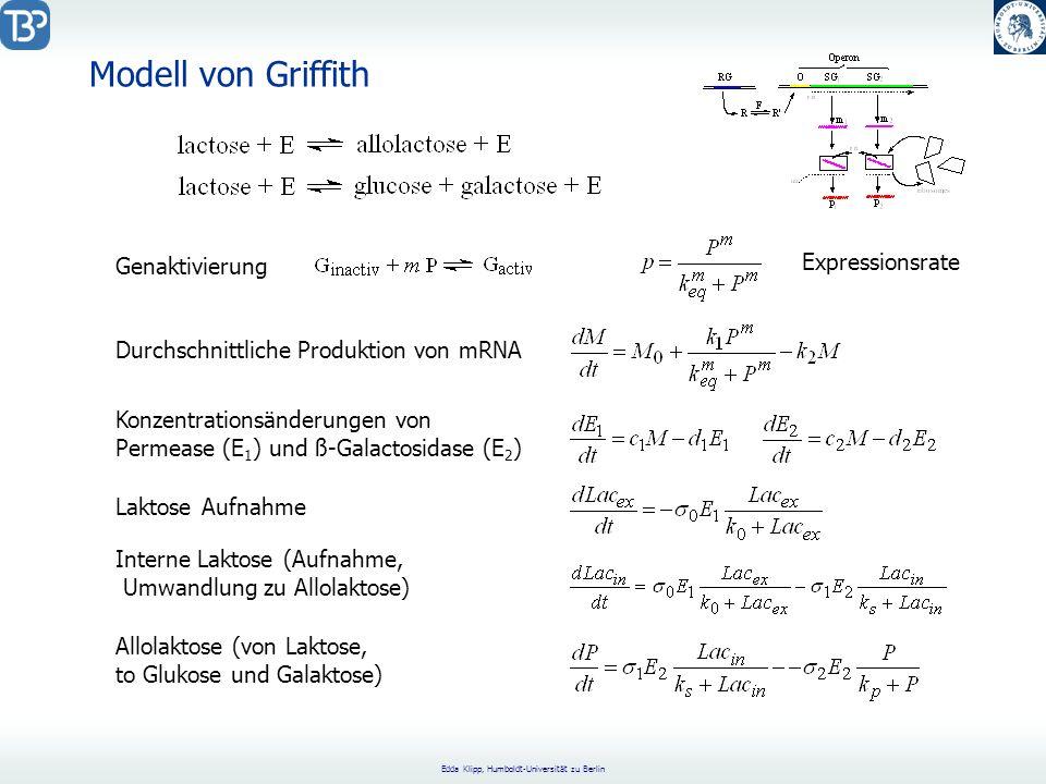 Modell von Griffith Expressionsrate Genaktivierung