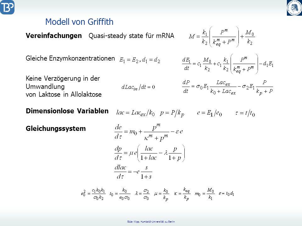 Modell von Griffith Vereinfachungen Quasi-steady state für mRNA