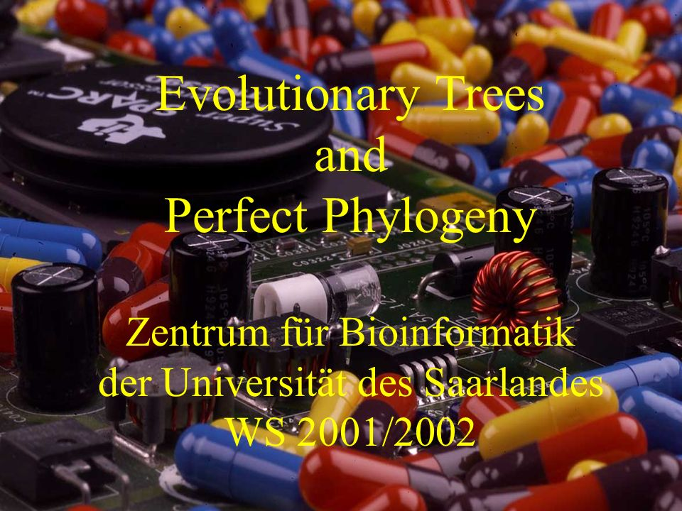 Evolutionary Trees and Perfect Phylogeny Zentrum für Bioinformatik