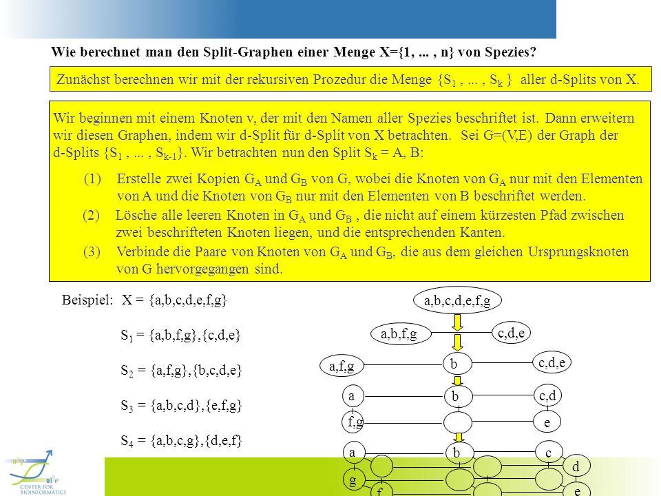 Wie berechnet man den Split-Graphen einer Menge X={1, ... , n} von Spezies