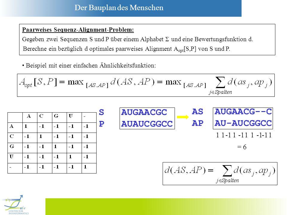 S AUGAACGC AS AUGAACG--C P AUAUCGGCC AP AU-AUCGGCC 1 1 -1 1 -1 1 1 -1