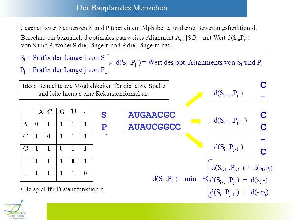 C - S AUGAACGC C P AUAUCGGCC - C Si = Präfix der Länge i von S
