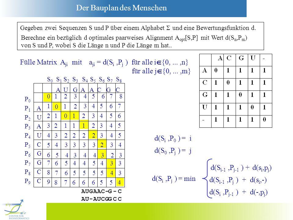 Fülle Matrix Aji mit aji = d(Si ,Pj ) für alle i{0, ... ,n}