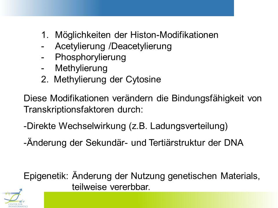 Möglichkeiten der Histon-Modifikationen