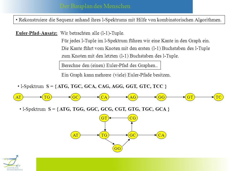 Euler-Pfad-Ansatz: Wir betrachten alle (l-1)-Tuple.