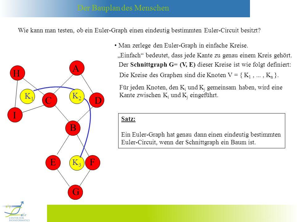 Wie kann man testen, ob ein Euler-Graph einen eindeutig bestimmten Euler-Circuit besitzt