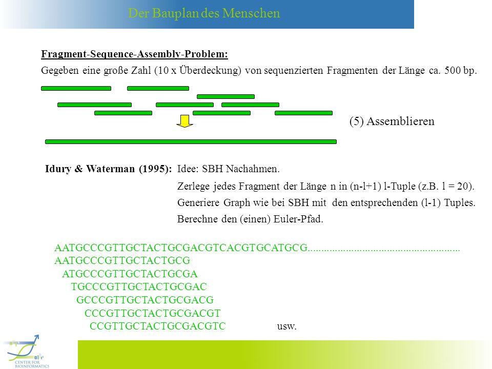 (5) Assemblieren Fragment-Sequence-Assembly-Problem: