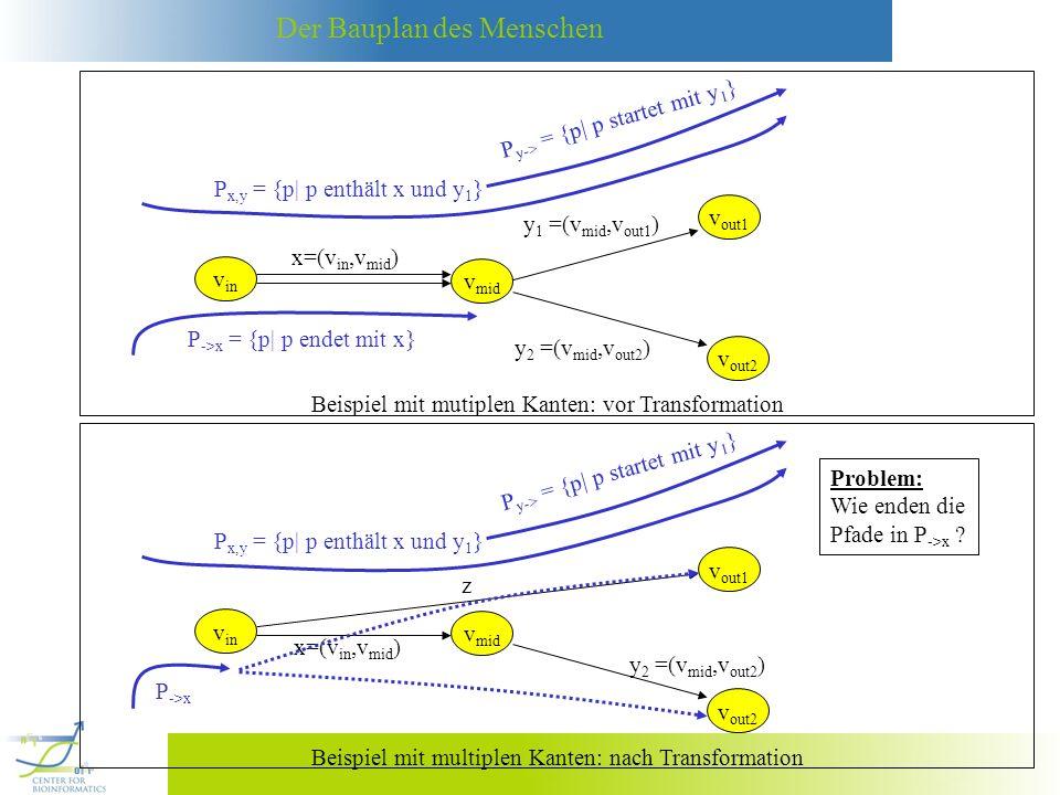 Beispiel mit mutiplen Kanten: vor Transformation