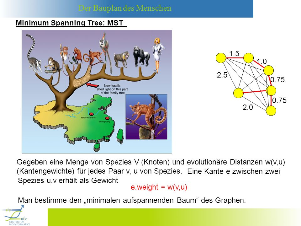 Minimum Spanning Tree: MST