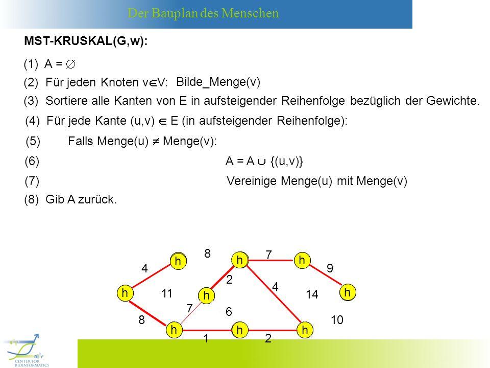 MST-KRUSKAL(G,w): (1) A =  (2) Für jeden Knoten vV: Bilde_Menge(v)