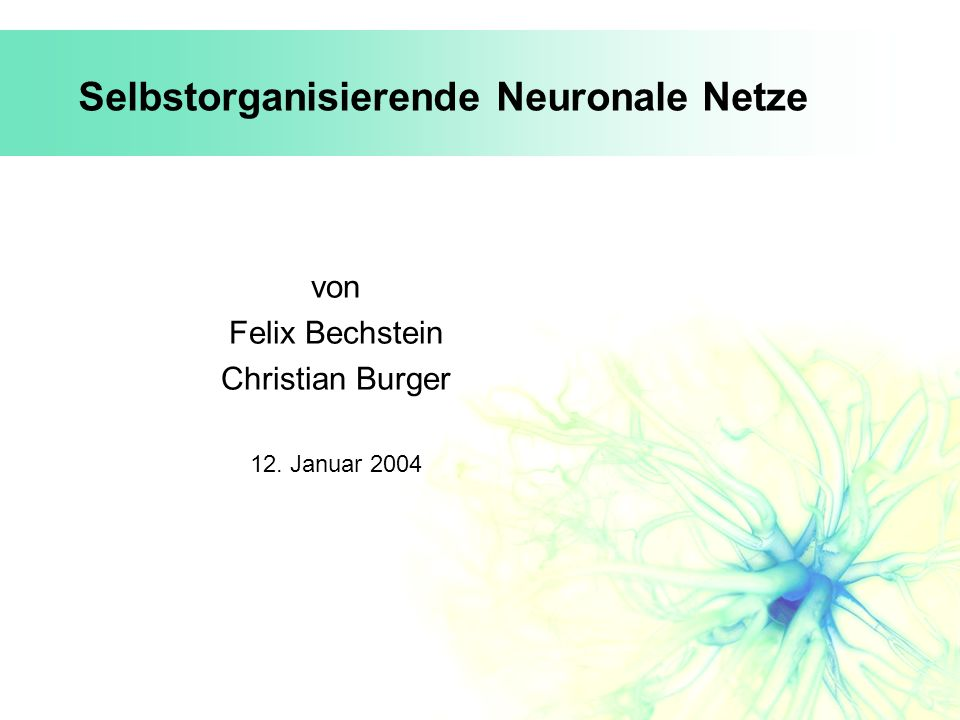 Selbstorganisierende Neuronale Netze