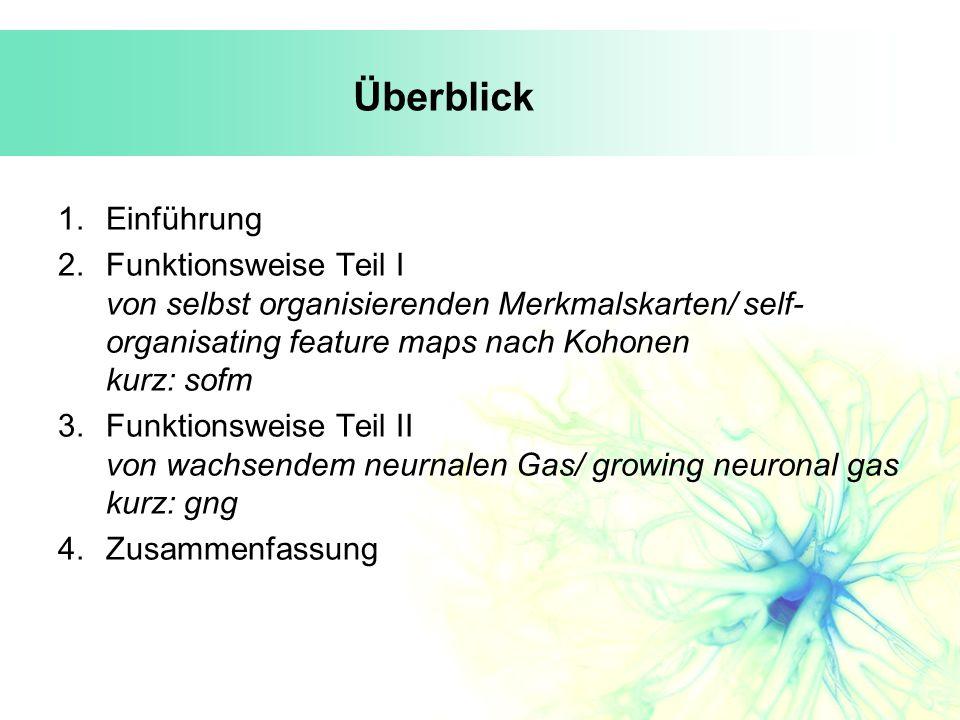 Überblick Einführung. Funktionsweise Teil I von selbst organisierenden Merkmalskarten/ self-organisating feature maps nach Kohonen kurz: sofm.