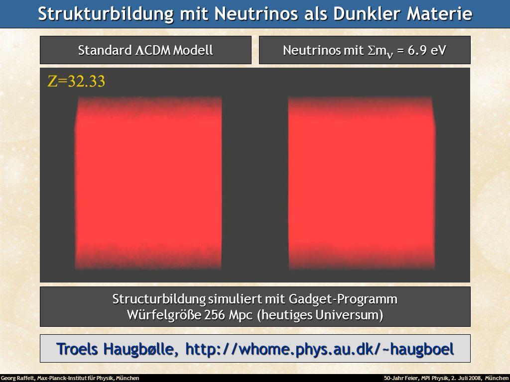 Strukturbildung mit Neutrinos als Dunkler Materie