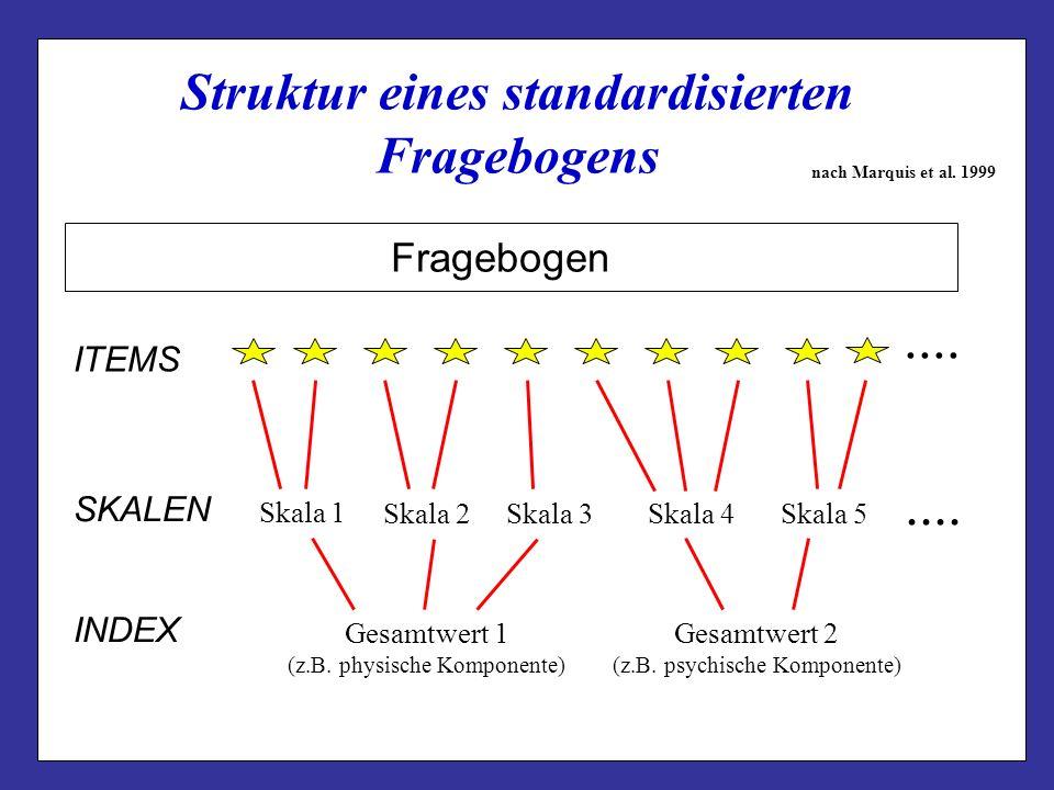 Struktur eines standardisierten Fragebogens