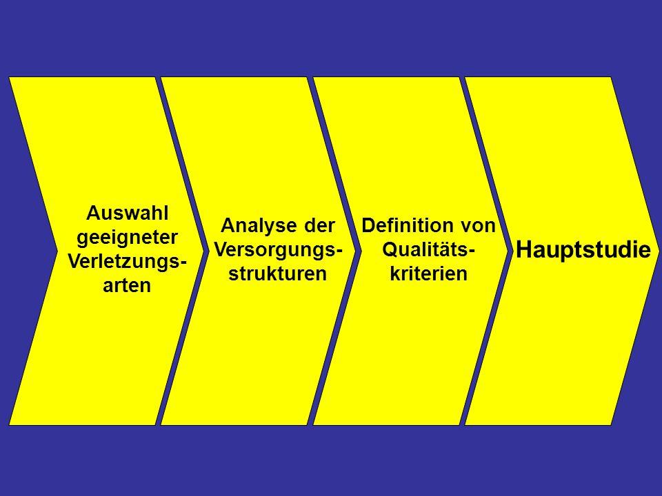 Hauptstudie Definition von Qualitäts- kriterien Analyse der