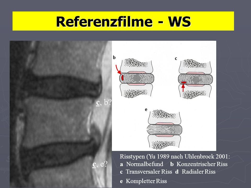 Referenzfilme - WS c, b c, e