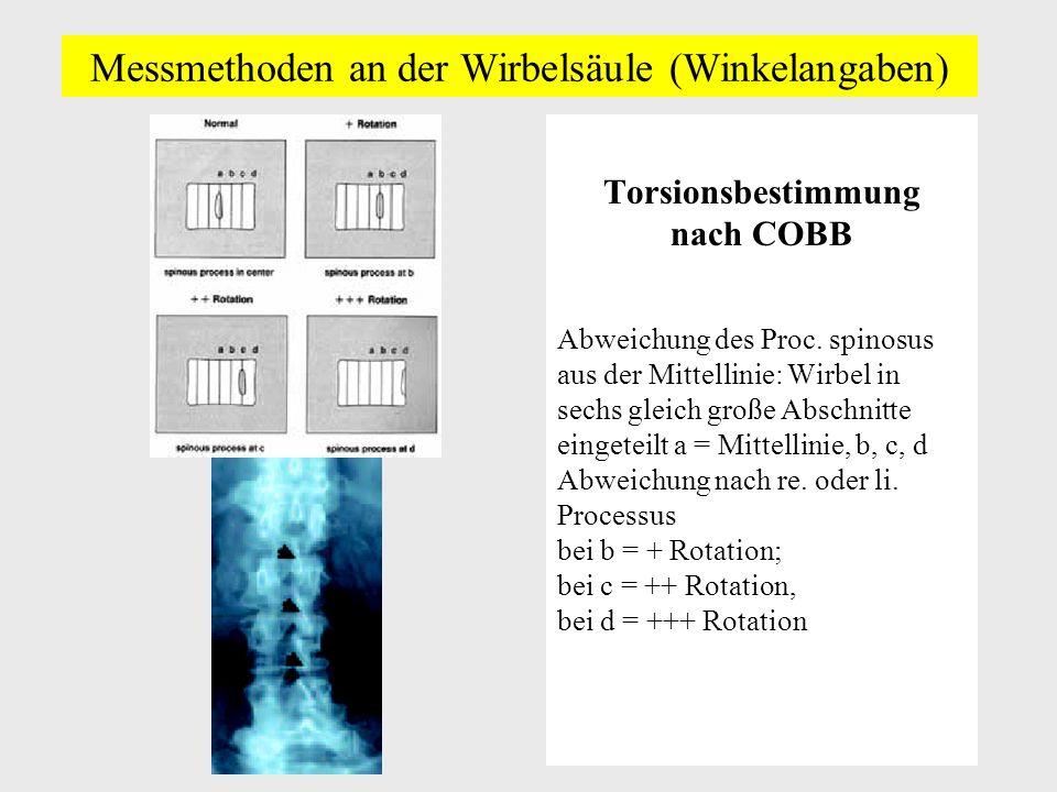 Messmethoden an der Wirbelsäule (Winkelangaben)