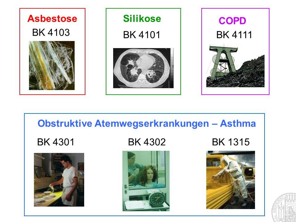 Obstruktive Atemwegserkrankungen – Asthma