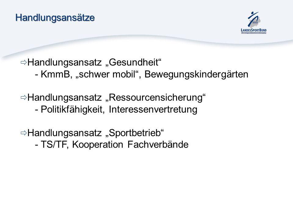 """HandlungsansätzeHandlungsansatz """"Gesundheit - KmmB, """"schwer mobil , Bewegungskindergärten. Handlungsansatz """"Ressourcensicherung"""