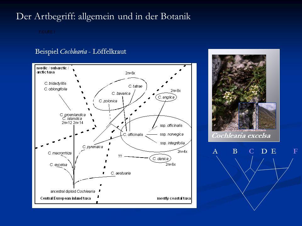 Der Artbegriff: allgemein und in der Botanik