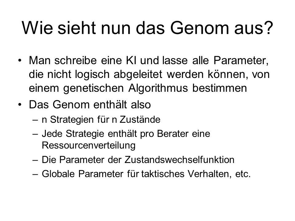 Wie sieht nun das Genom aus