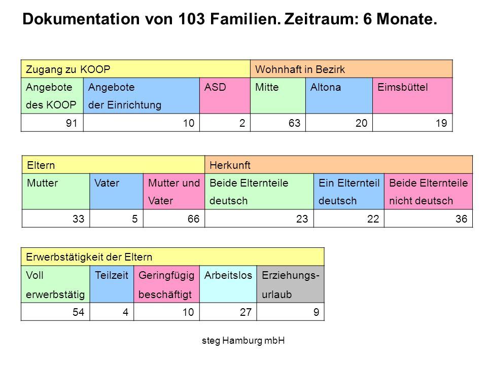Dokumentation von 103 Familien. Zeitraum: 6 Monate.