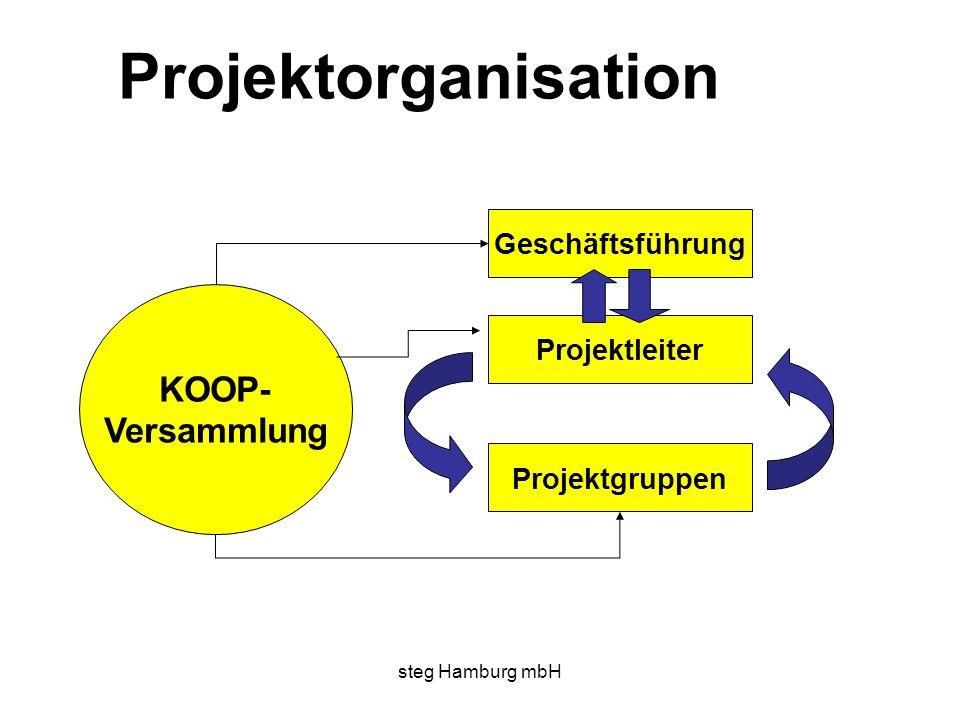 Projektorganisation KOOP- Versammlung Geschäftsführung Projektleiter