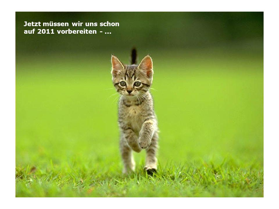 Jetzt müssen wir uns schon auf 2011 vorbereiten - ...