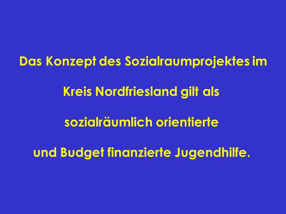 Das Konzept des Sozialraumprojektes im Kreis Nordfriesland gilt als