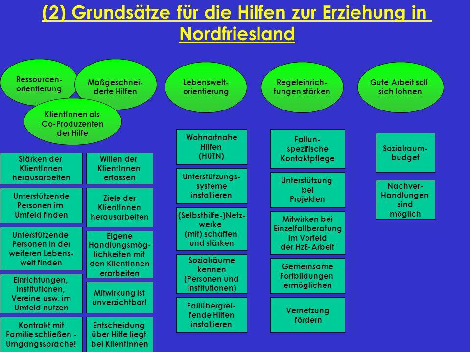 (2) Grundsätze für die Hilfen zur Erziehung in