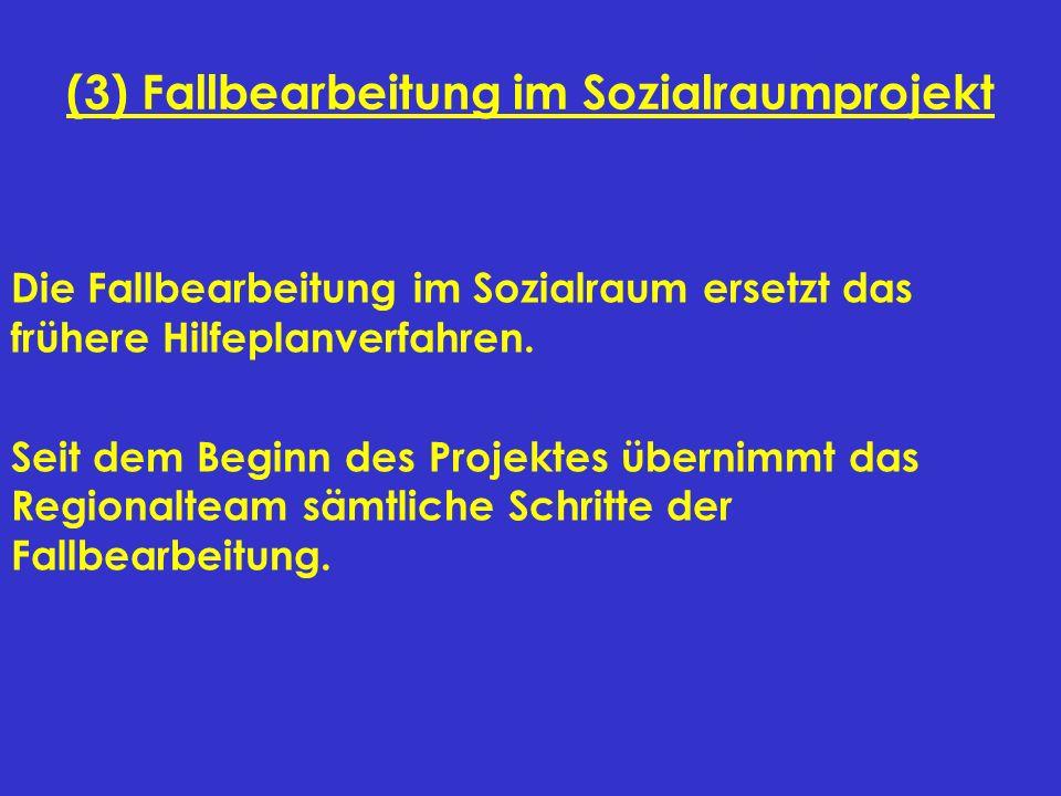 (3) Fallbearbeitung im Sozialraumprojekt