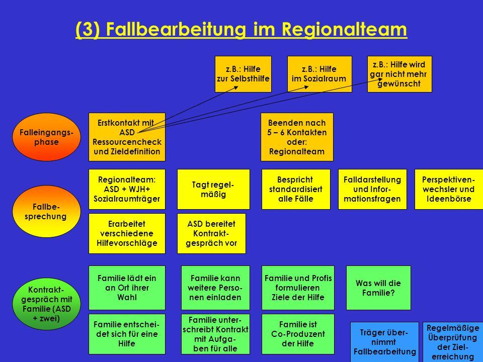 (3) Fallbearbeitung im Regionalteam