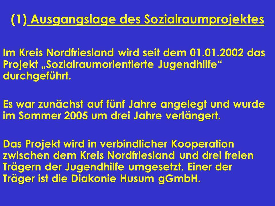 (1) Ausgangslage des Sozialraumprojektes
