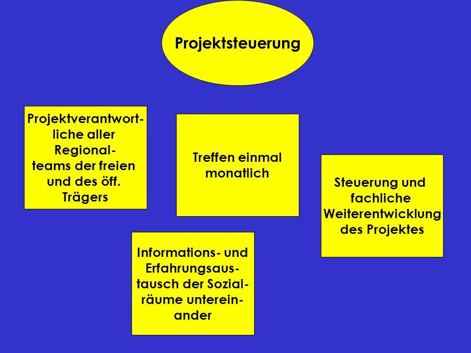 Projektsteuerung Projektverantwort- liche aller Regional-