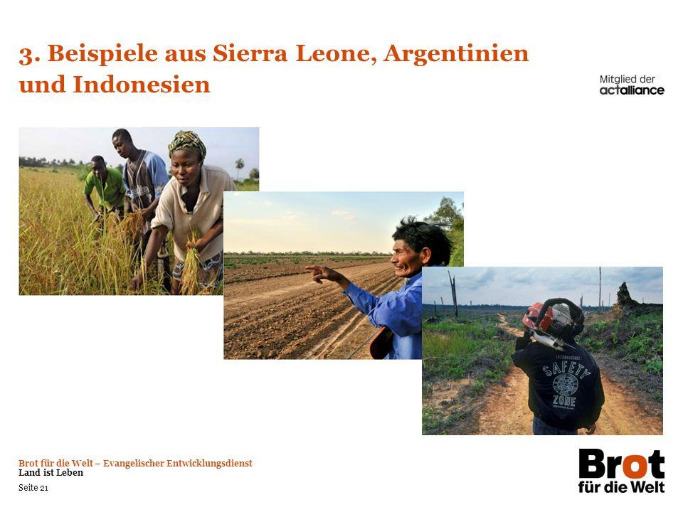 3. Beispiele aus Sierra Leone, Argentinien und Indonesien