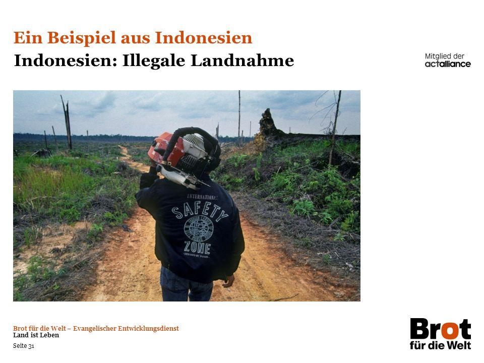 Ein Beispiel aus Indonesien Indonesien: Illegale Landnahme