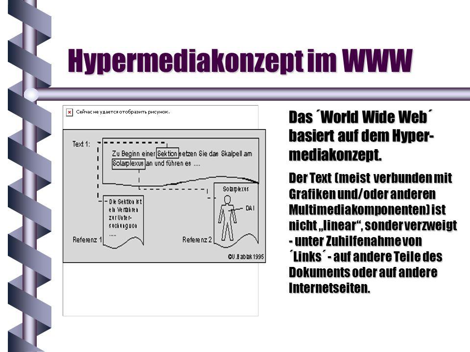 Hypermediakonzept im WWW