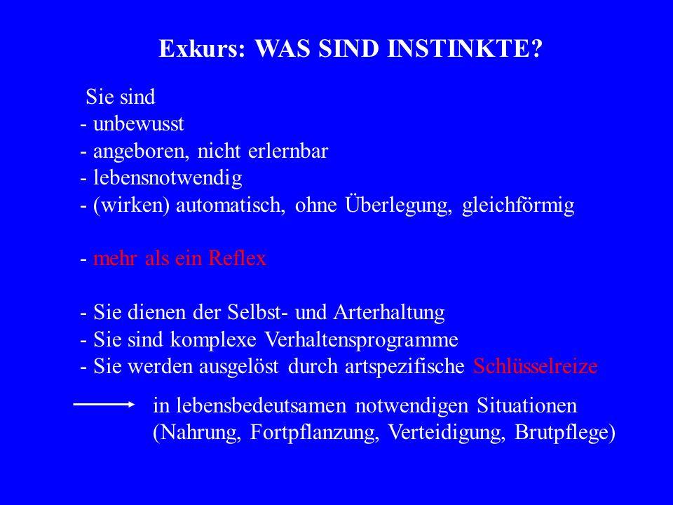 Exkurs: WAS SIND INSTINKTE