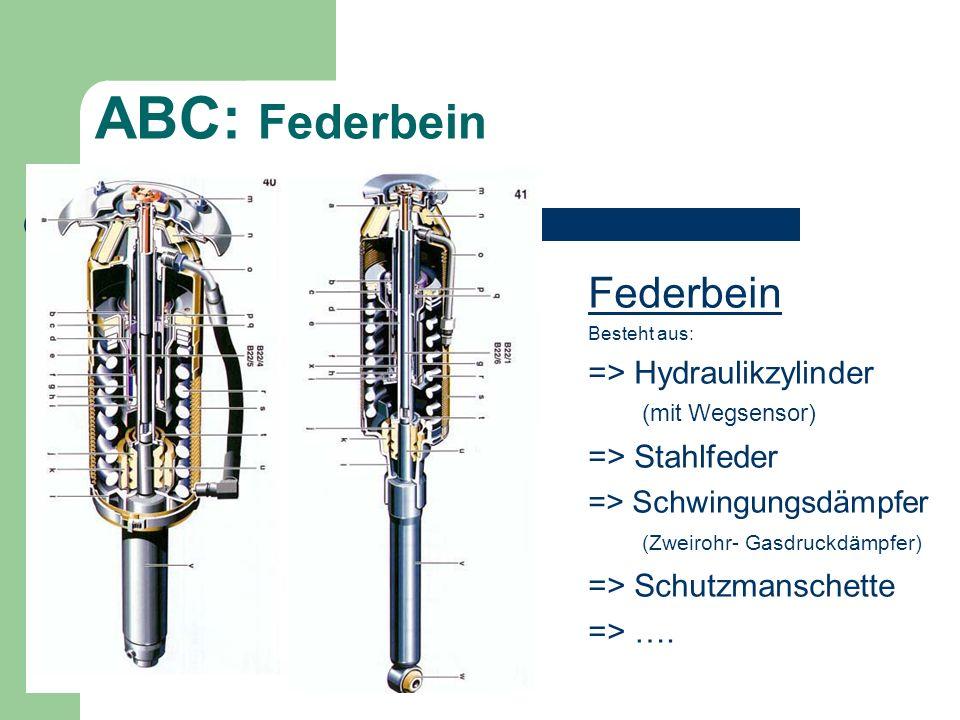 ABC: Federbein Federbein => Hydraulikzylinder (mit Wegsensor)
