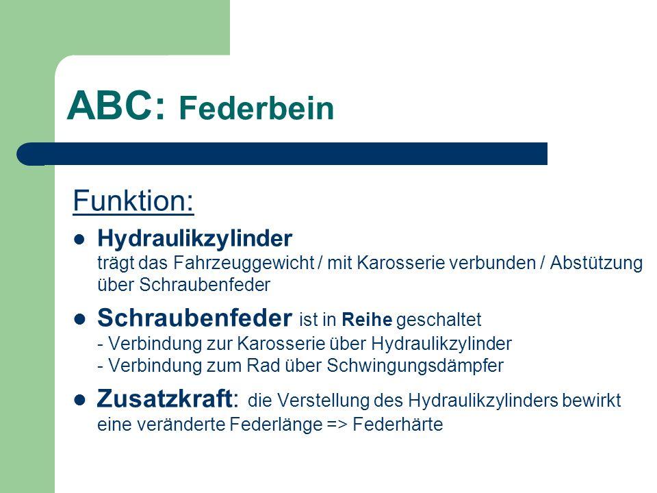 ABC: Federbein Funktion: