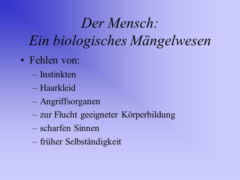 Der Mensch: Ein biologisches Mängelwesen
