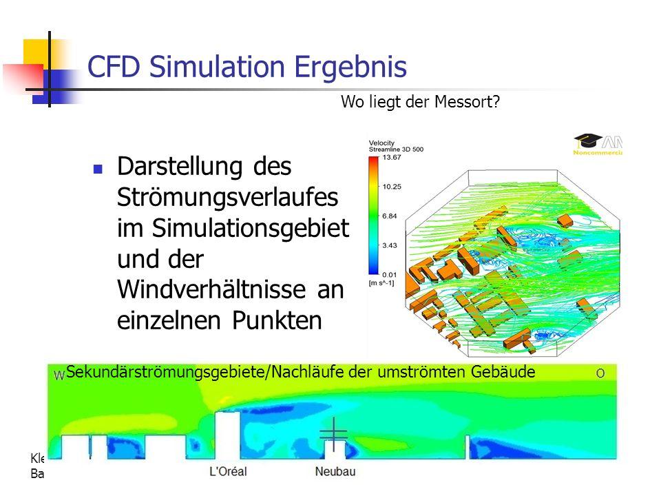 CFD Simulation Ergebnis