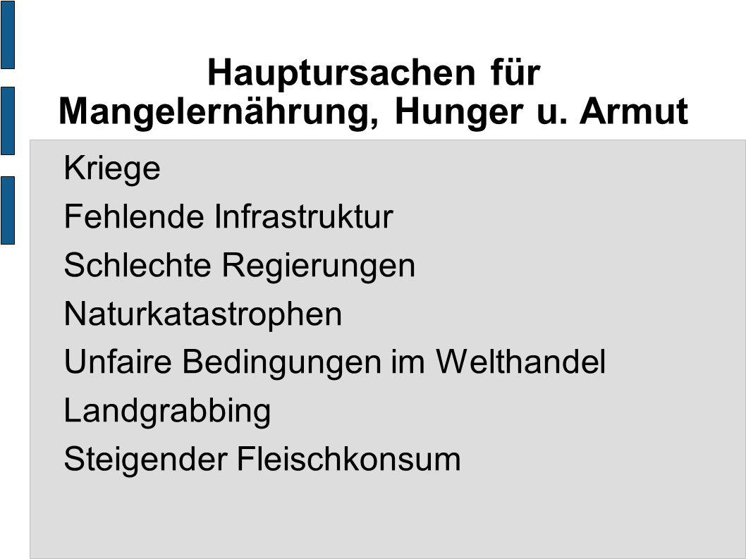 Hauptursachen für Mangelernährung, Hunger u. Armut