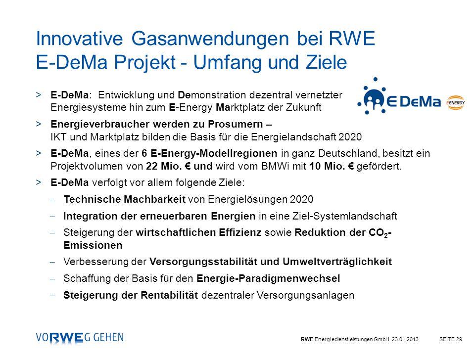 Innovative Gasanwendungen bei RWE E-DeMa Projekt - Umfang und Ziele